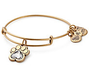 Alex and Ani Prints of Love Charm Bangle -ASPCA - J381534