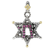 Barbara Bixby Sterling & 18K Garnet Star of David Charm - J318738