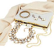 Charming Charlie Holiday Jewelry & Accessory Set - J335239