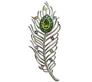 Judith Ripka Sterling Textured Gemstone PeacockFeather Pin - J341539