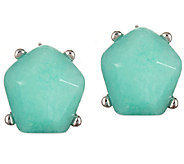 Capwell Aerial Dyed Jade Stud Earrings - J340145
