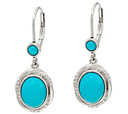 Sleeping Beauty Turquoise Sterling Drop Earrings - J347748