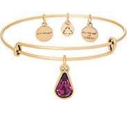 Alex and Ani Goldtone Crystal Charm Bangle - J351849