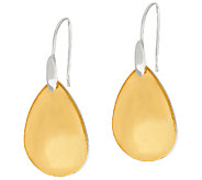 RLM Bronze Pears Two Tone Earrings - J324251