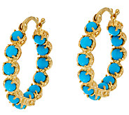 Sleeping Beauty Turquoise Sterling 18K Gold Plated Hoop Earrings - J322852