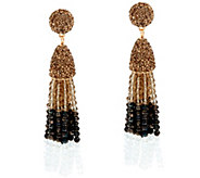 BaubleBar Ombre Beaded Pinata Tassel Drop Earrings - J335453