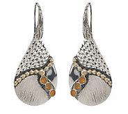 As Is Andrea Brodi Sterling Pear Shape Gemstone Drop Earrings - J285356