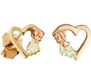 Black Hills Heart Post Earrings 10K/12K - J377456