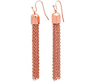 Stainless Steel Tassel Drop Earrings - J342957