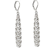 Joan Rivers Pave Lattice Lever Back Earrings - J323058