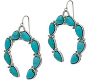 Simulated Turquoise Dangle Earrings - J347659