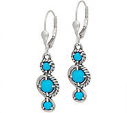 Carolyn Pollack Sleeping Beauty Turquoise Sterling Silver Drop Earrings - J352061