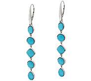 Sleeping Beauty Turquoise Multi-Cut Sterling Silver Drop Earrings - J281163