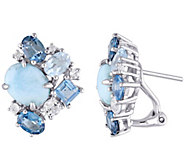 Sterling Larimar and 4.60 cttw Topaz Earrings - J342463
