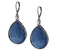 As Is Wendy Williams Faceted Frosted Tear Drop Earrings - J348863