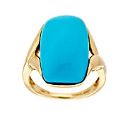 Sleeping Beauty Turquoise Elongated Cushion Ring 14K Gold - J295664