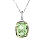 Peter Thomas Roth Sterling Fantasies Halo Pendant on Chain - J349865