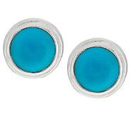 Sleeping Beauty Turquoise Round Sterling Stud Earrings - J289067