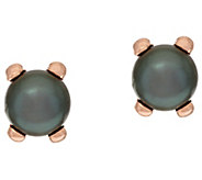 Honora Cultured Pearl 9.0mm Button Polished Bronze Stud Earrings - J320968
