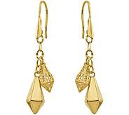 14K Kite-Shaped Dangle Shepherds Hook Earrings - J345171