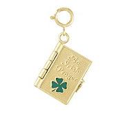 3-D Irish Prayer Book Charm, 14k - J107173