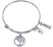 Extraordinary Life Sterling Journey Shaker Charm Bangle - J340975