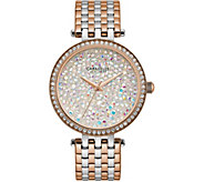 Caravelle New York Womens Two-Tone Crystal Watch - J375979