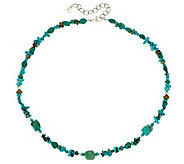 Shades of Turquoise Bead 21 Sterling Necklace by American West - J326080