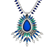Susan Graver Long Statement Necklace - J326981