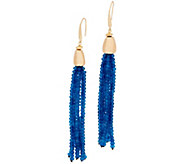 Lola Rose Zoelle Gemstone Tassel Earrings - J348581