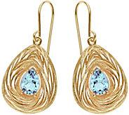 Adi Paz Pear-Shaped Dangle Earrings, 14K - J379582
