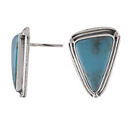 Bisbee Limited Edition Turquoise Triangular Earrings - J112994