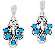 Carolyn Pollack Sleeping Beauty Turquoise Sterling Silver Drop Earrings - J320098