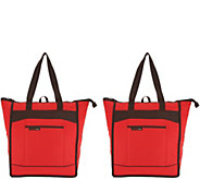 Rachael Ray Set of 2 Insulated ChillOut Totes - K46401