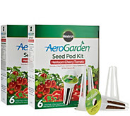 Set of 2 Miracle-Gro Aerogarden 6-pod Seed Kit - K43610