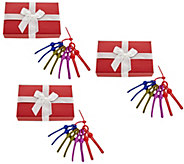Set of 3 8-pc. Seal Tight Reusuable Pull Ties with Gift Boxes - K46630