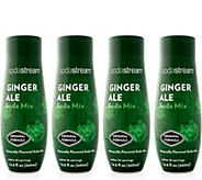 SodaStream Ginger Ale Sparkling Drink Mix - K375051