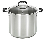 T-Fal 12-Qt Stainless Steel Stock Pot - K299653
