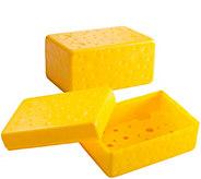 Gourmac Set of 2 Cheese Savers - K306753