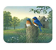 Tuftop Country Morning BluebirdsTempered Glass Kitchen Board - K125457