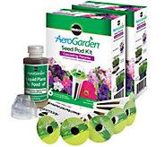 Miracle-Gro AeroGarden Set of 2 6-Pod Petunia Seed Pod Kits - K305361