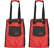 CarryMore Set of 2 Resuable Shopping Bags with Cart Clips - K46282