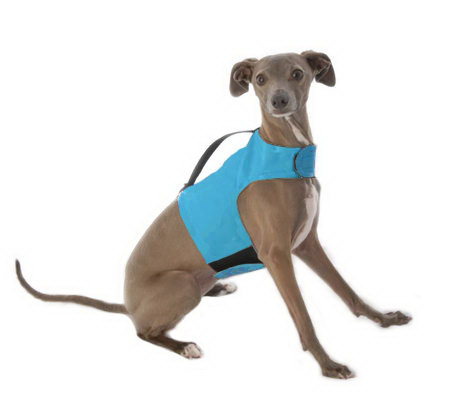 Yap Wrap Choke Free Body Harness For Small Dogs Qvc Com