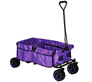 Creative Outdoor All-Terrain Folding Wagon with Divider - M48802