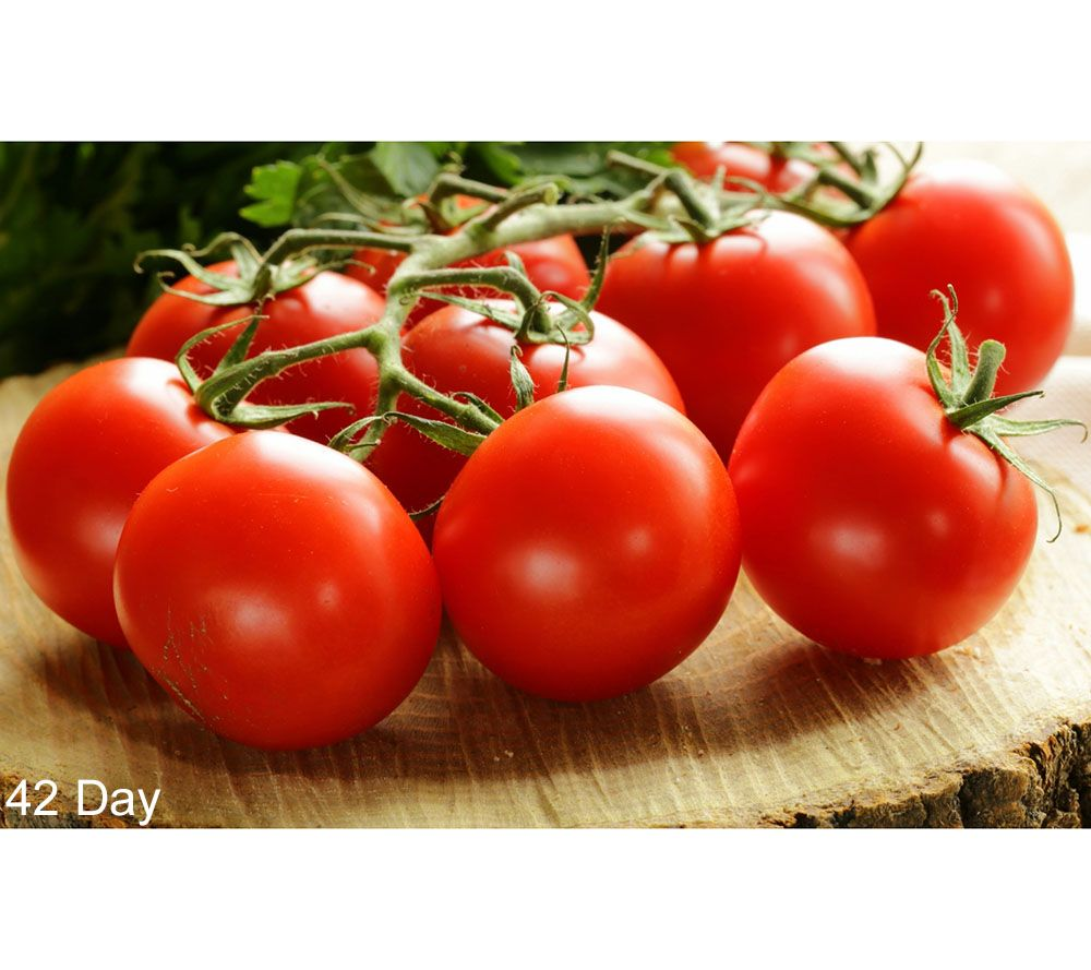 Cottage Farms 6-pc. Tomato Lover's Gourmet Collection