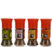 Rachael Ray Set of 4 Seasoning and Salt Grinders - M54613