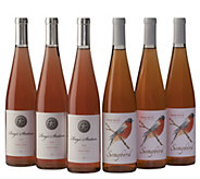 Rose All Day Six-Bottle Assortment by Vintage Wine Estates - M117016