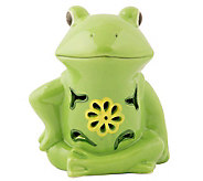 Solar Garden Light Ceramic Frog - M113517