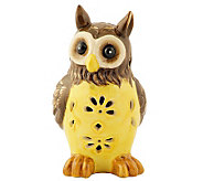 Solar Garden Light Ceramic Owl - M113519