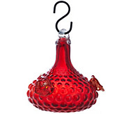 Glass Bell Shape Hummingbird Feeder by Evergreen - M49121